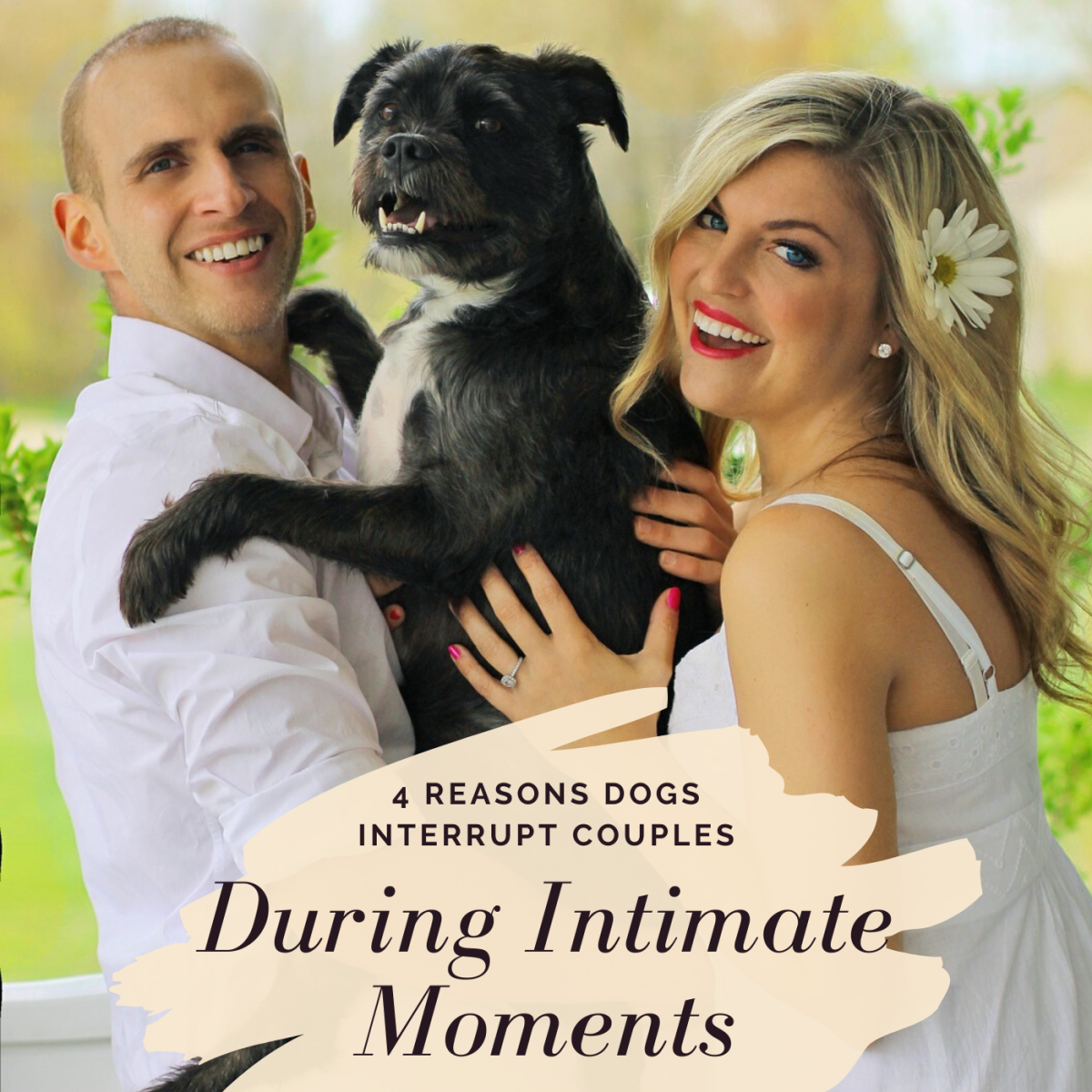 It's no secret that a dog jumping in between a kissing couple can kill the romantic mood. Learn what this behavior might mean and how to address it.