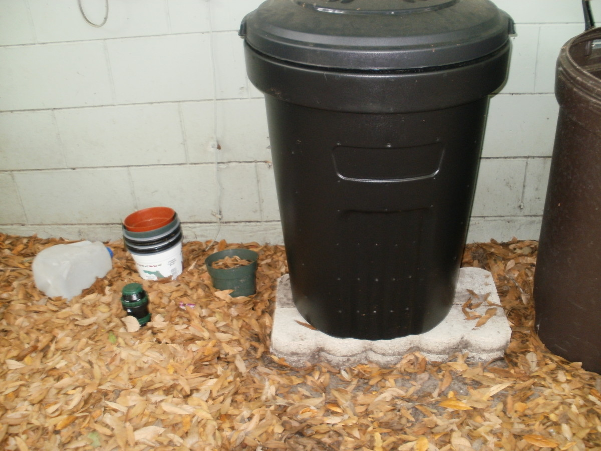 My homemade compost bin on its perch.