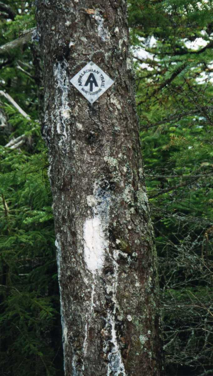 Though, thanks to thieves, the diamond shaped metal AT signs are rare, the trail is marked with white 2x6 - inch blazes along the way.  I only lost the trail a few times during my journey.