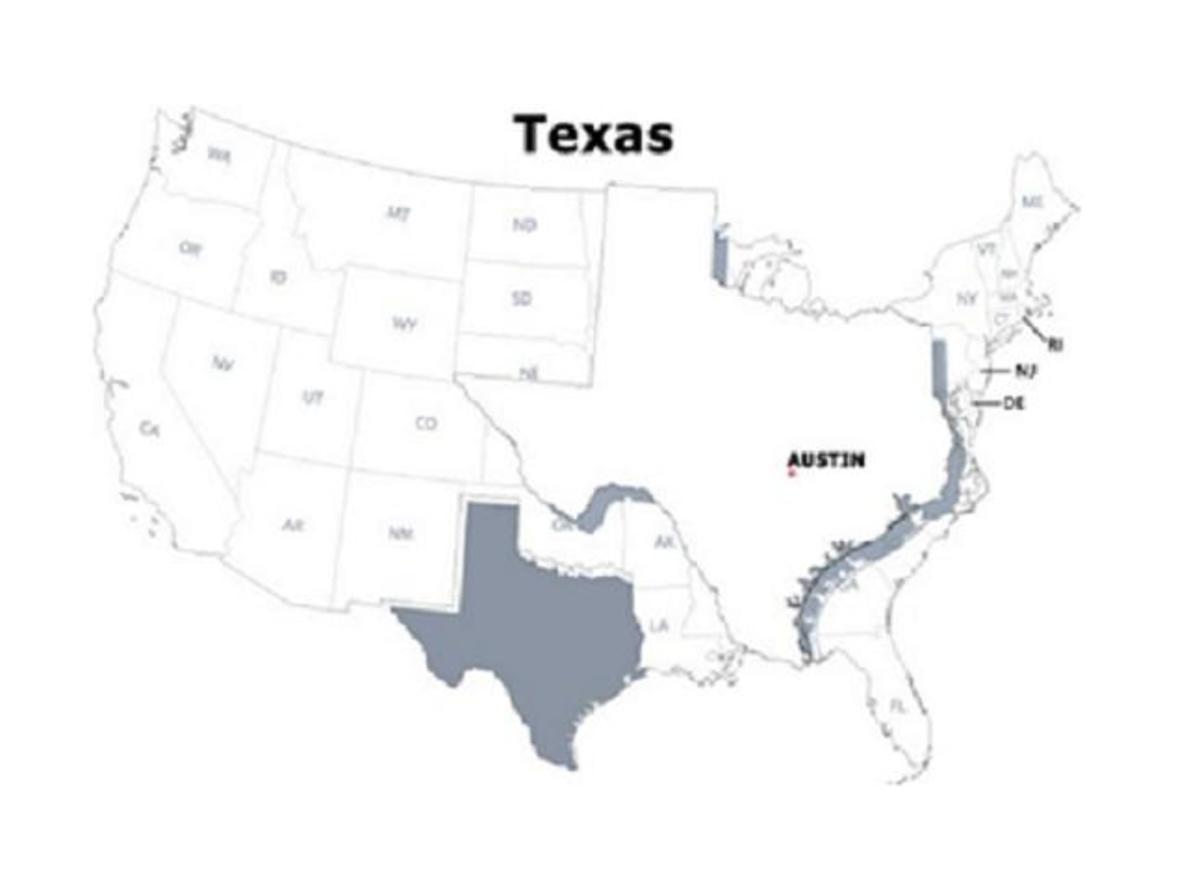 Texas Blue Warrants