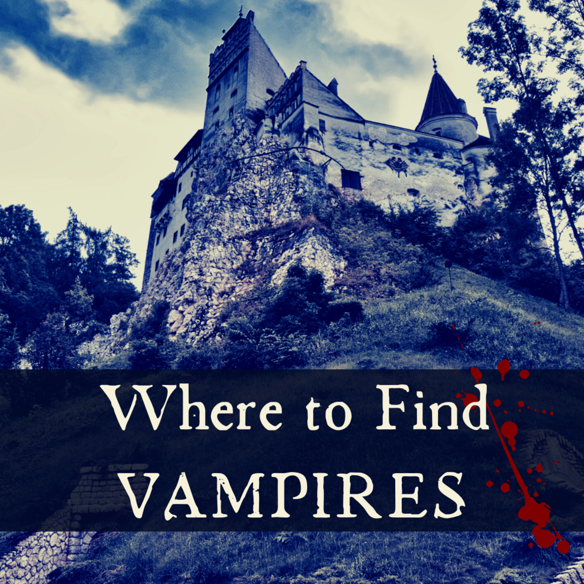 Where to Find a Vampire in Real Life