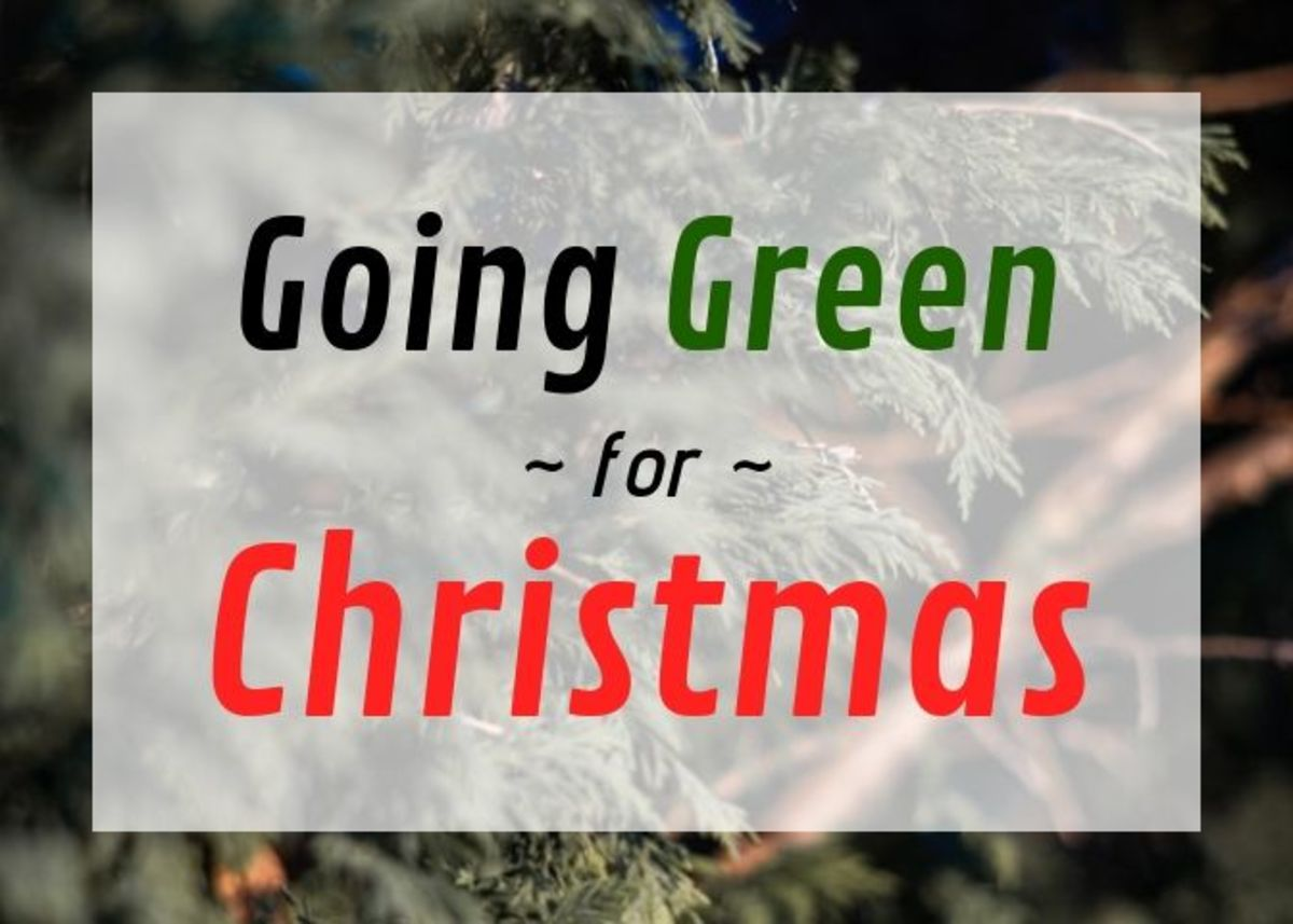 It's possible to keep our beloved Christmas traditions while being good to the planer. Here are some ideas.