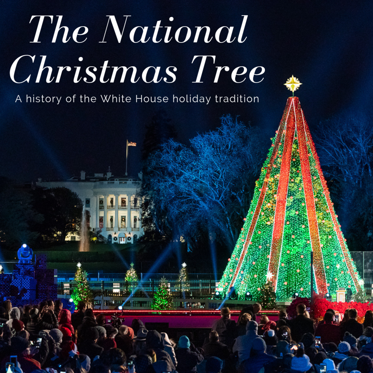 This article will break down the history of the National Christmas Tree located at the White House.