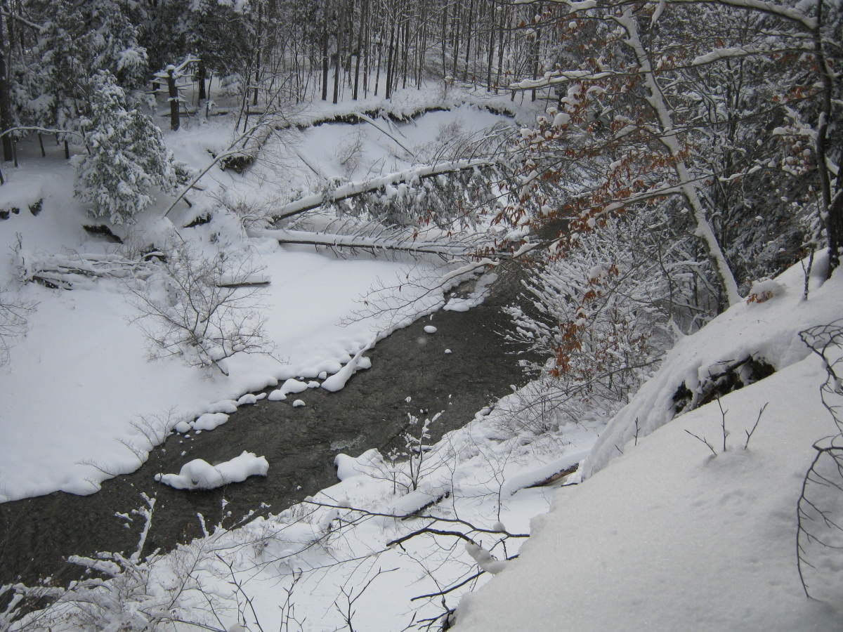 Pretty little streams like this one can be deadly in the winter.
