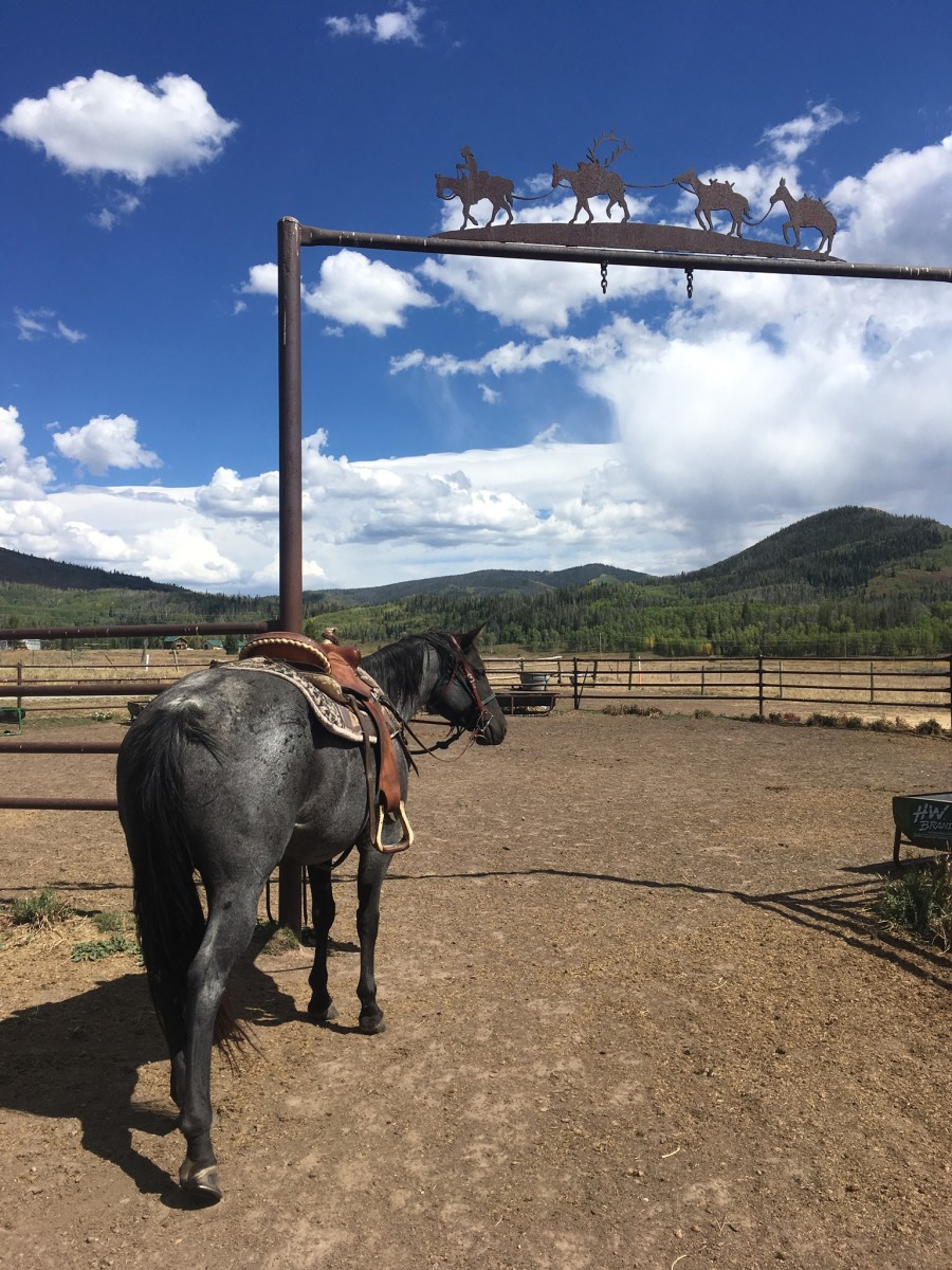 A corral to keep horses in