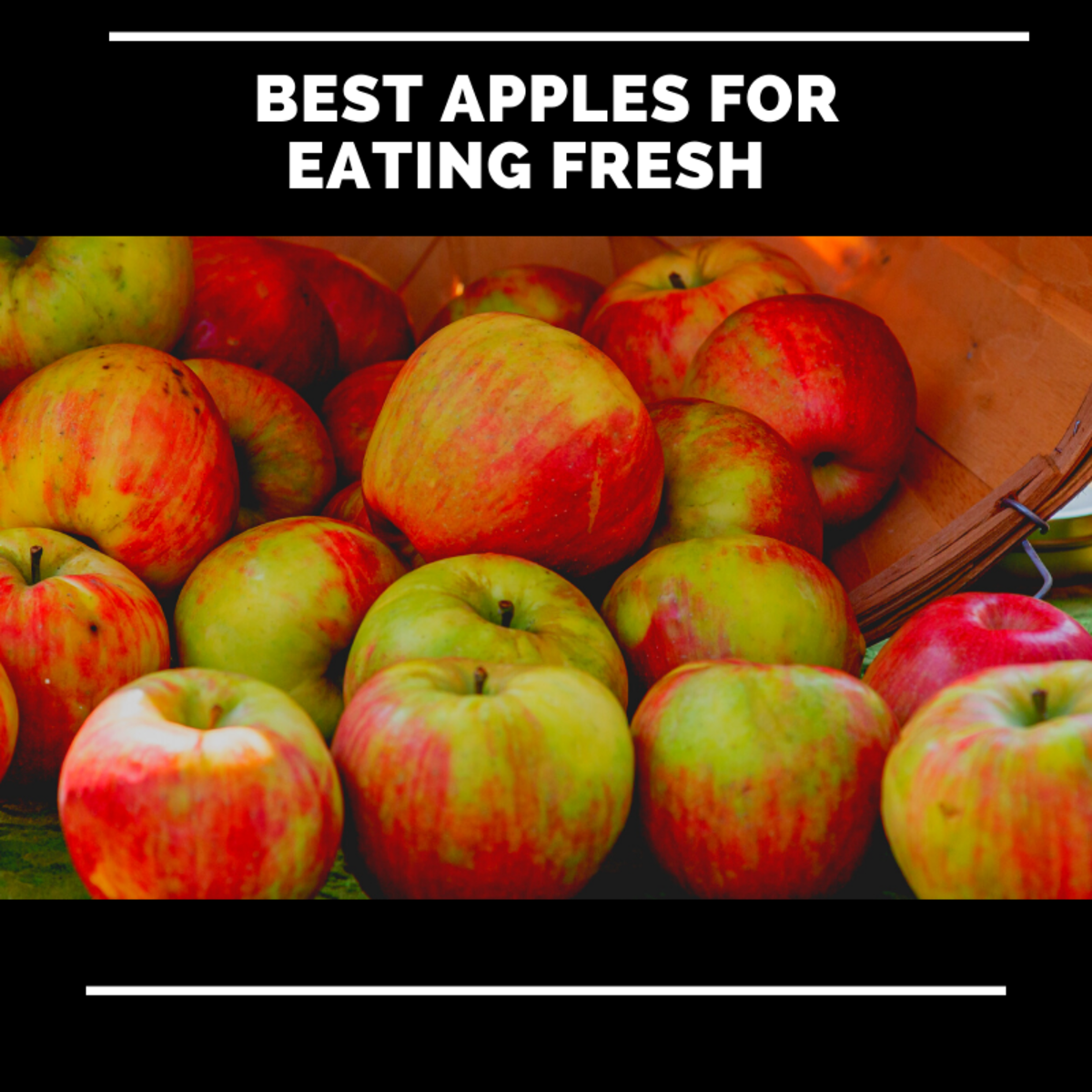 These apples are my favorites to eat and serve fresh.