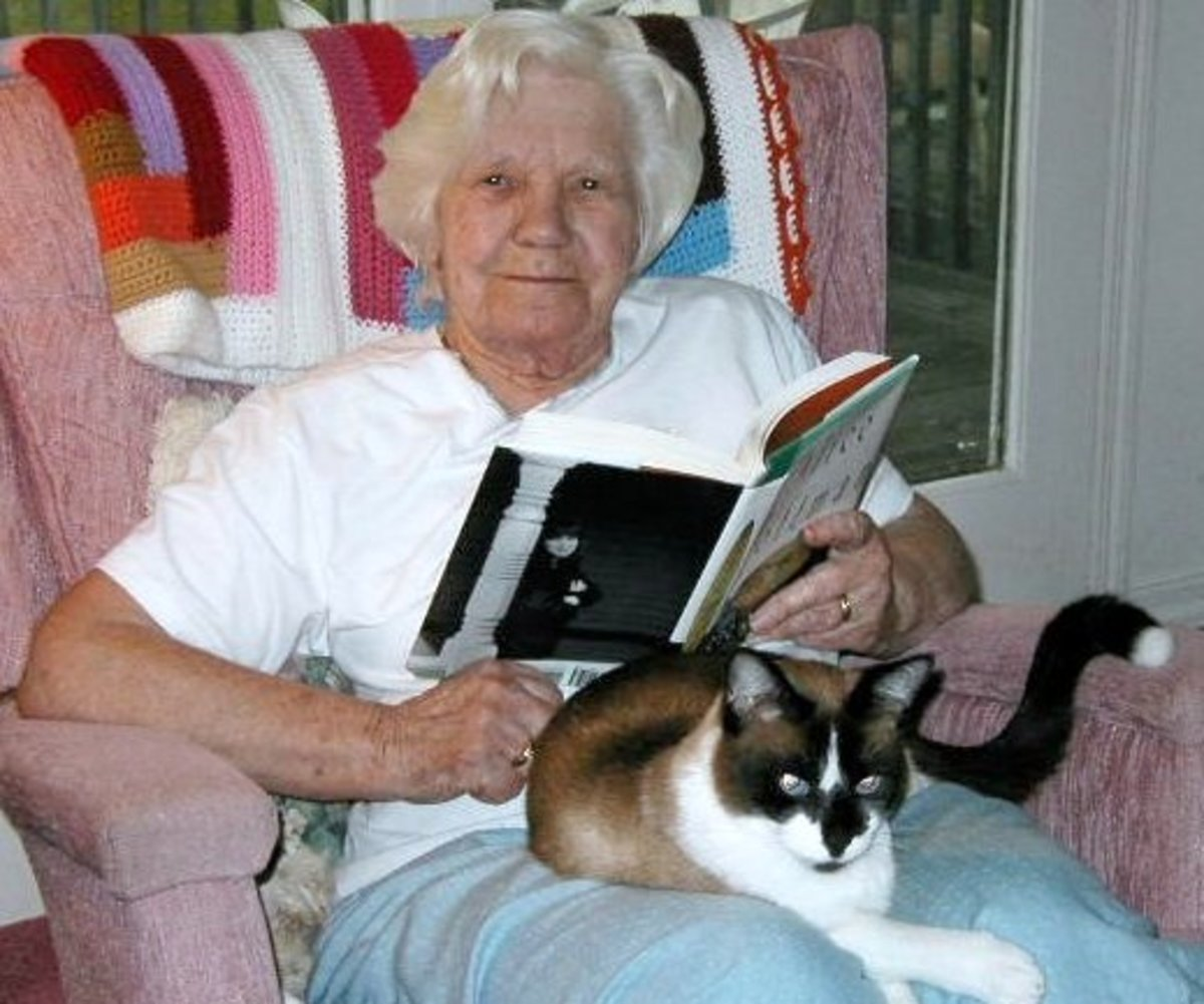 My Mom enjoying some of the comforts of old age...a good book, a comfortable place to read it and a warm cat purring on her lap...