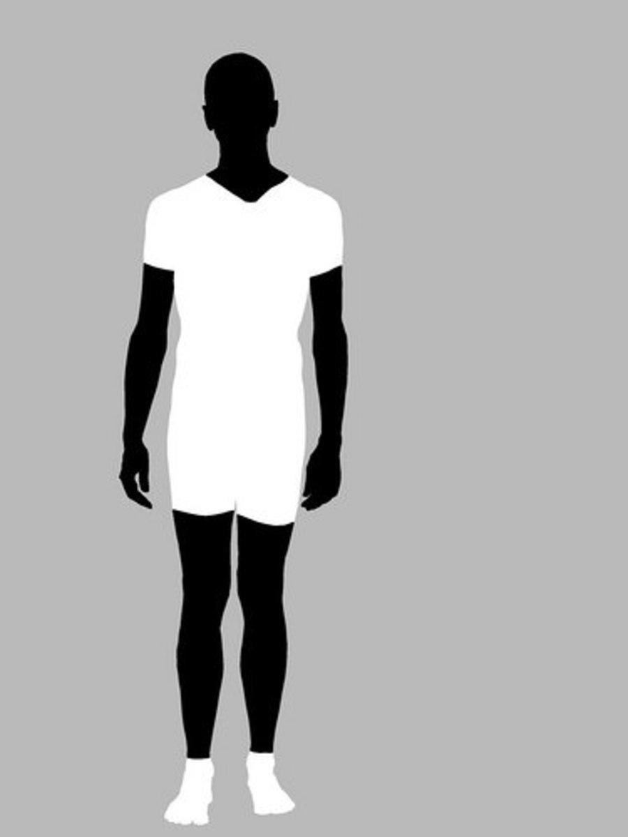Training for Your Somatotype: Ectomorph, Endomorph, and Mesomorph