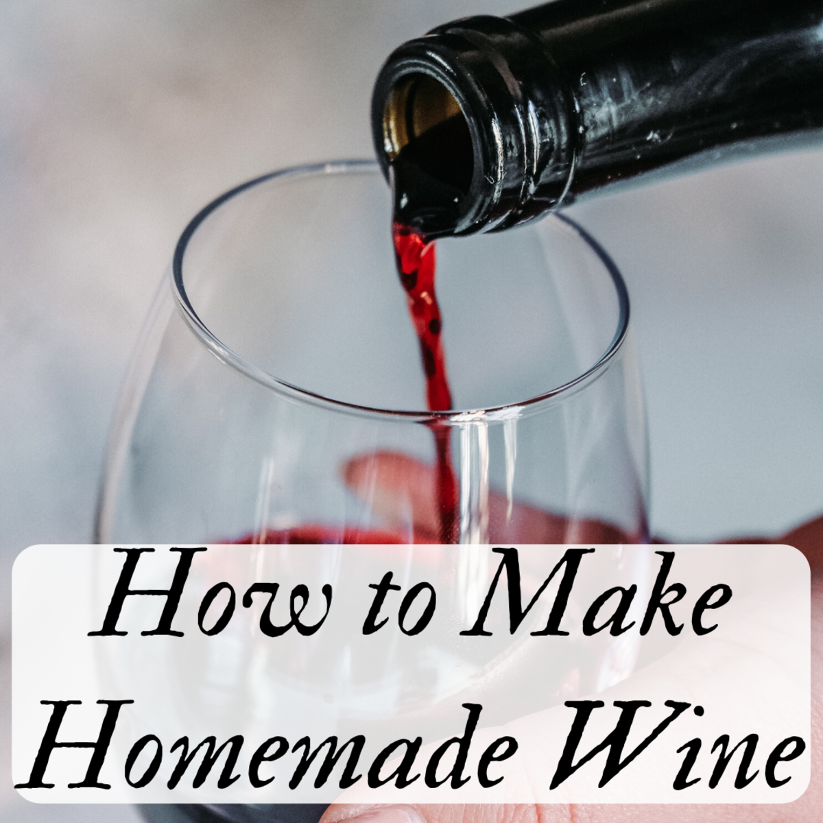 Making wine at home is easier than you think! Read on to learn how you can make your own red or white wine at home.