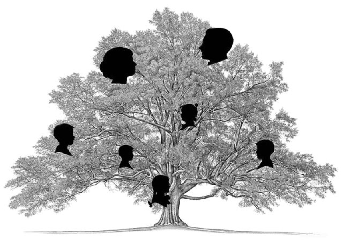 creating-your-own-pictorial-family-tree-using-inexpensive-frames-a-little-paint-and-a-photocopier
