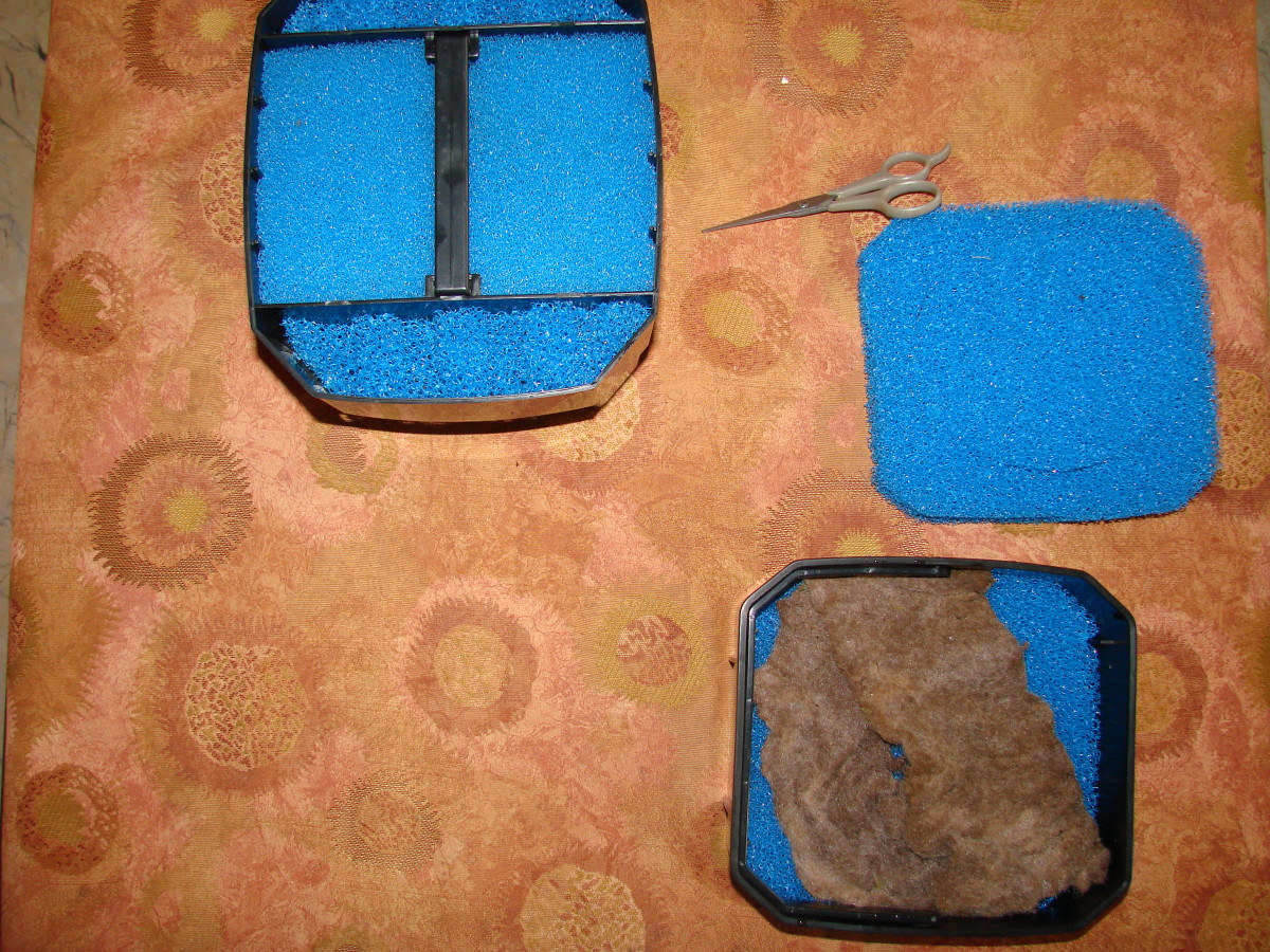 Mixing the old filter media with the new. I cut out a portion of the old sponge and placed it with the new.