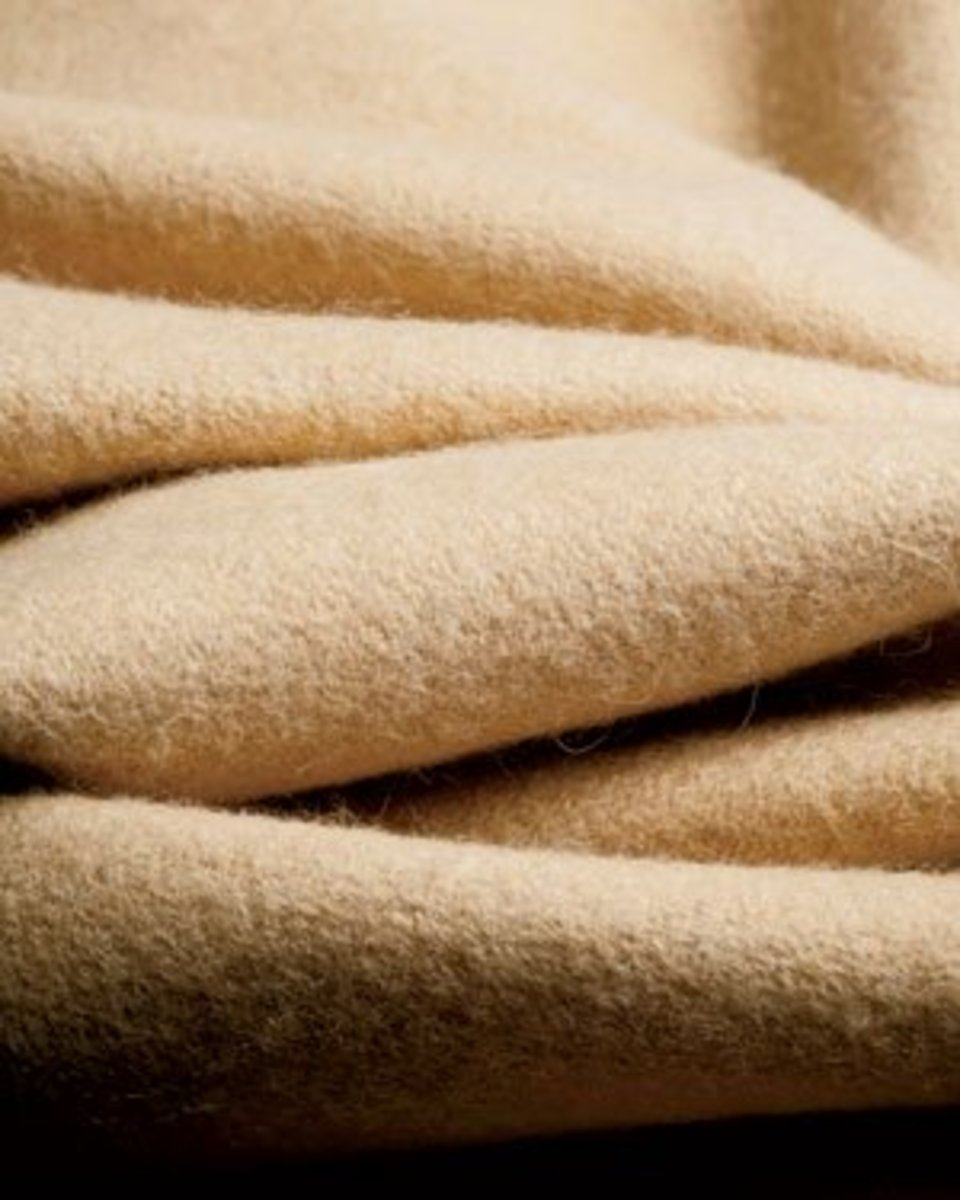 The Rarest, Softest, and Most Expensive Fabric in the World