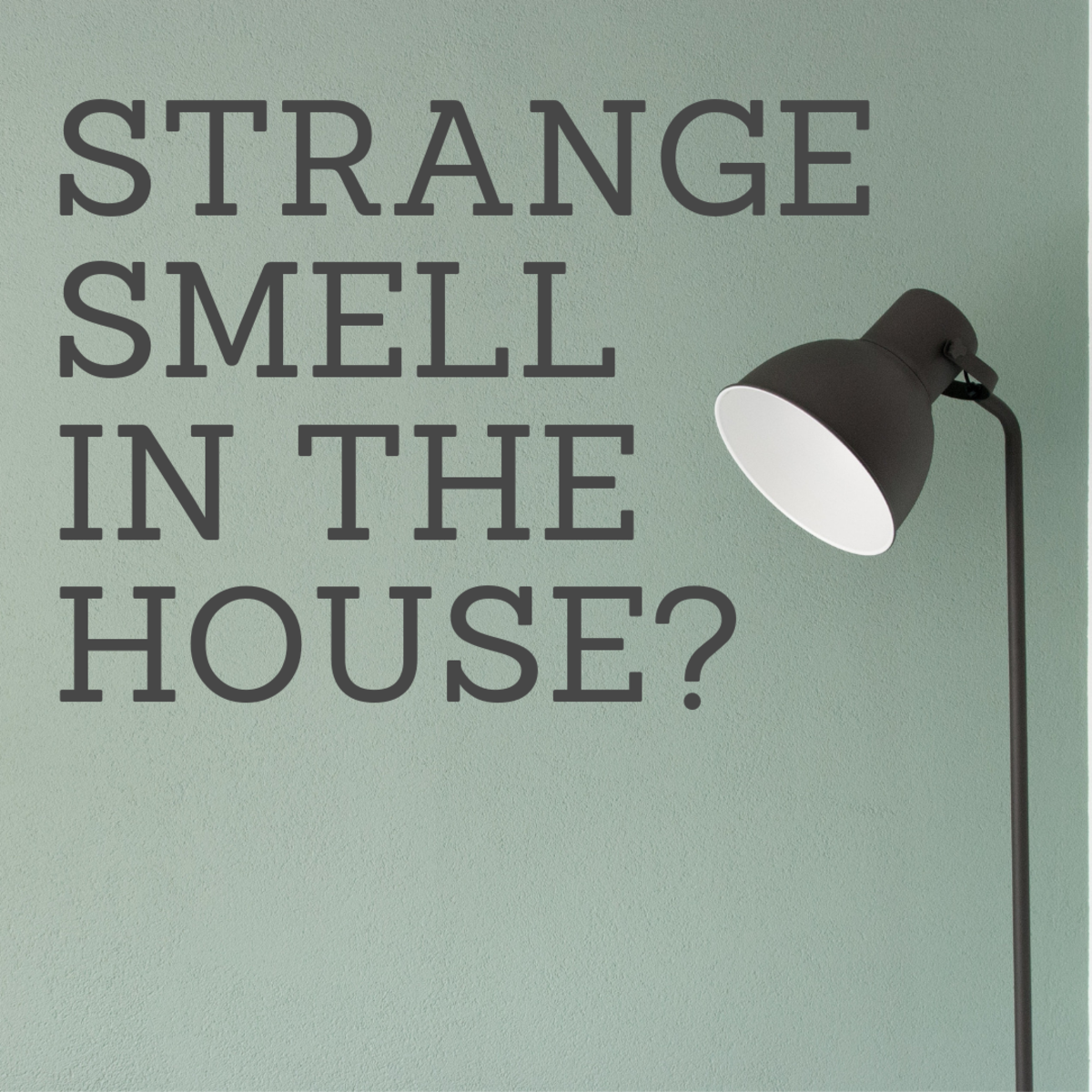 What Is That Strange Smell in the House?