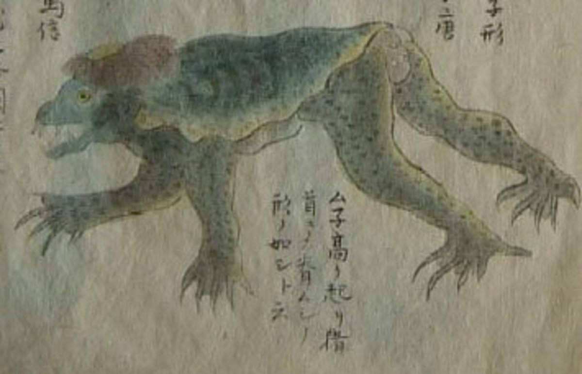 A drawing of a kappa that was supposedly captured on a beach in Japan in 1836. According to records from the time, this kappa was 1 meter long, weighed 45 kg and had a bent neck and protruding chest.