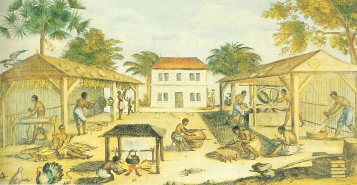 A Virginia tobacco plantation, circa 1670. Slaves toiled in a harsh environment without any legal protection after the 1705 law was passed.