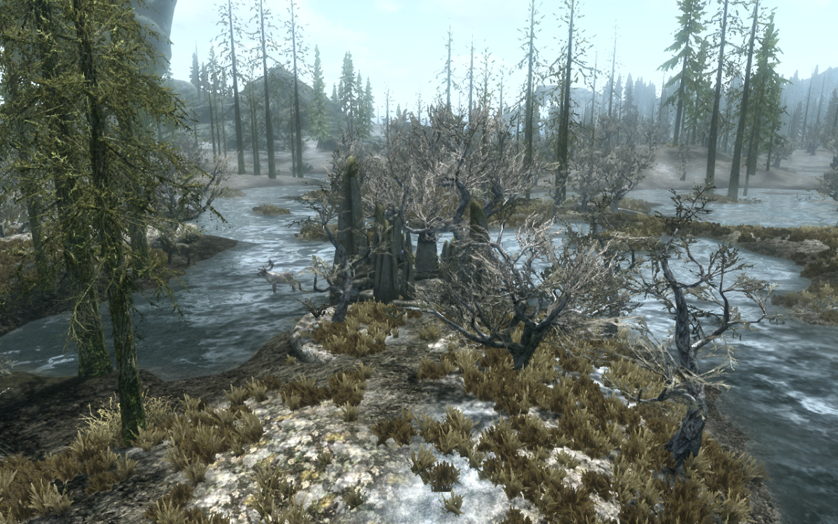 The Apprentice Stone - Standing Stone Primary Location - Elder Scrolls V: Skyrim