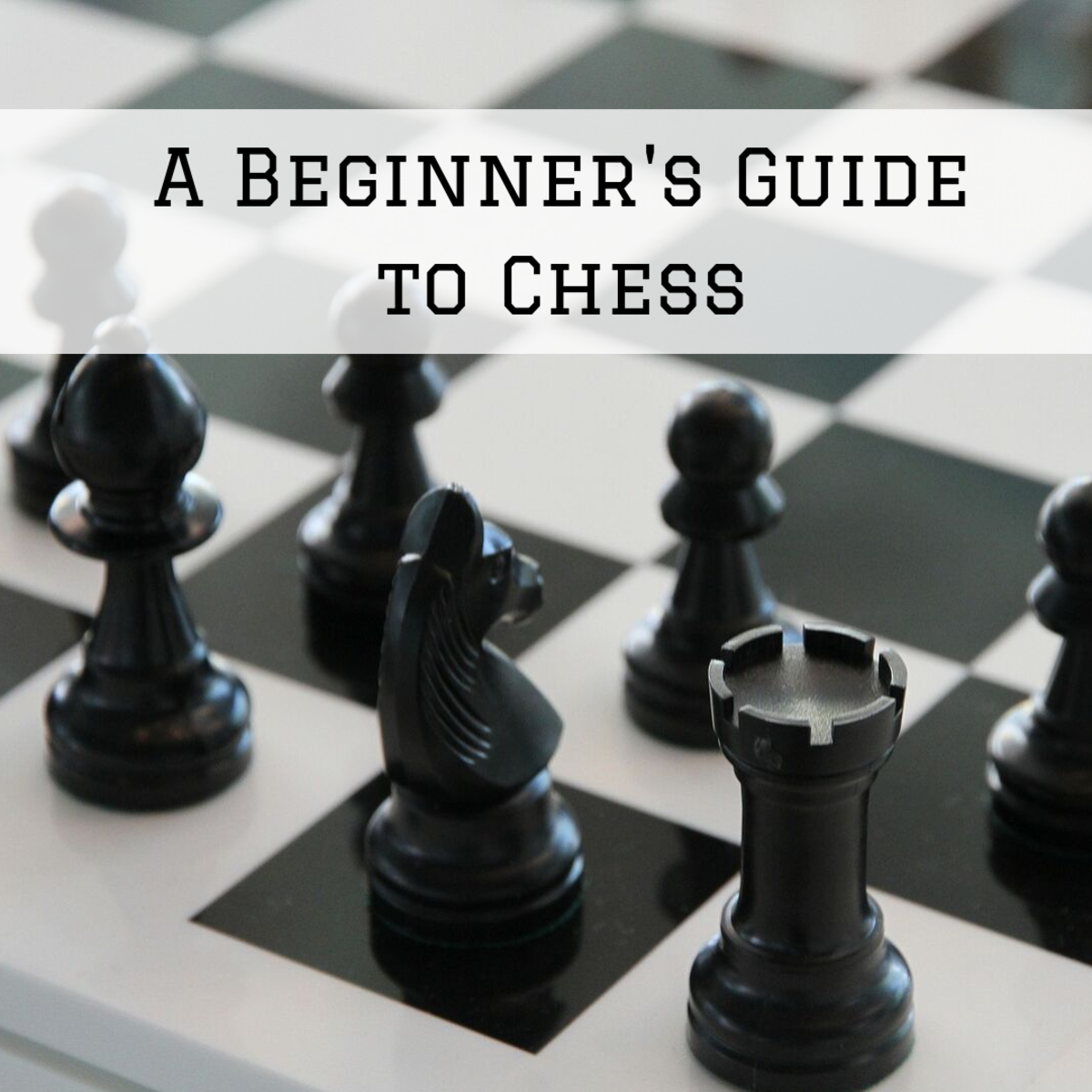 Learn how to set up a game of chess, move the different pieces, and start playing this classic game.