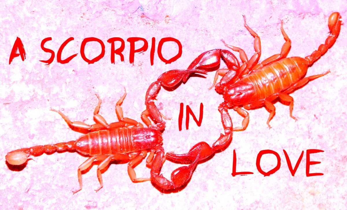 How a Scorpio Man in Love Behaves