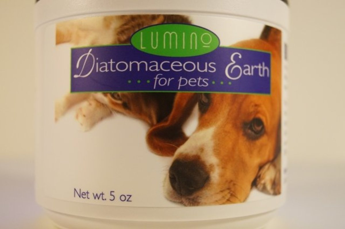 Diatomaceous earth for pets gets rid of fleas naturally.