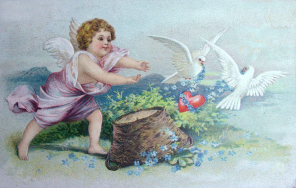 Vintage Valentine's Day Postcard.  A cupid angel on Valentine's Day, chasing doves or lovebirds.