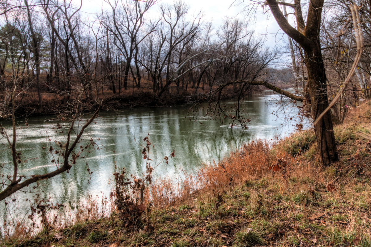 Duck River in January, Henry Horton State Park