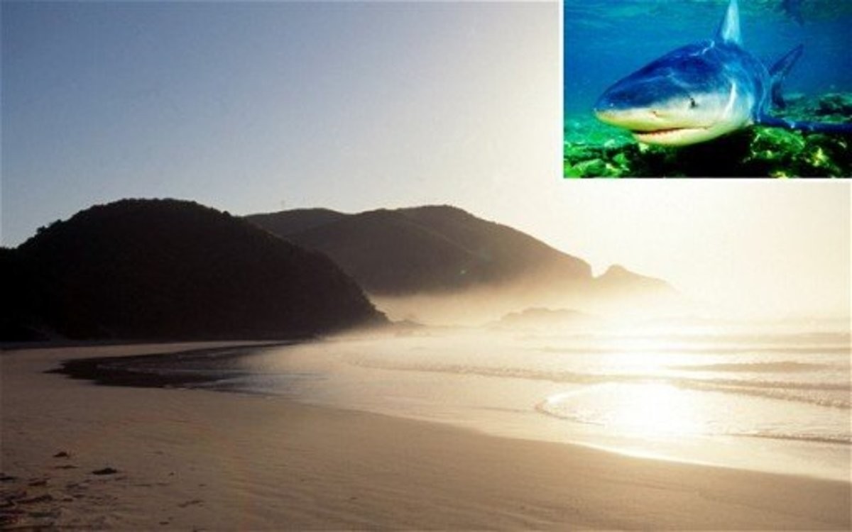 Port St Johns, South Africa, scene of a spate of fatal shark attacks