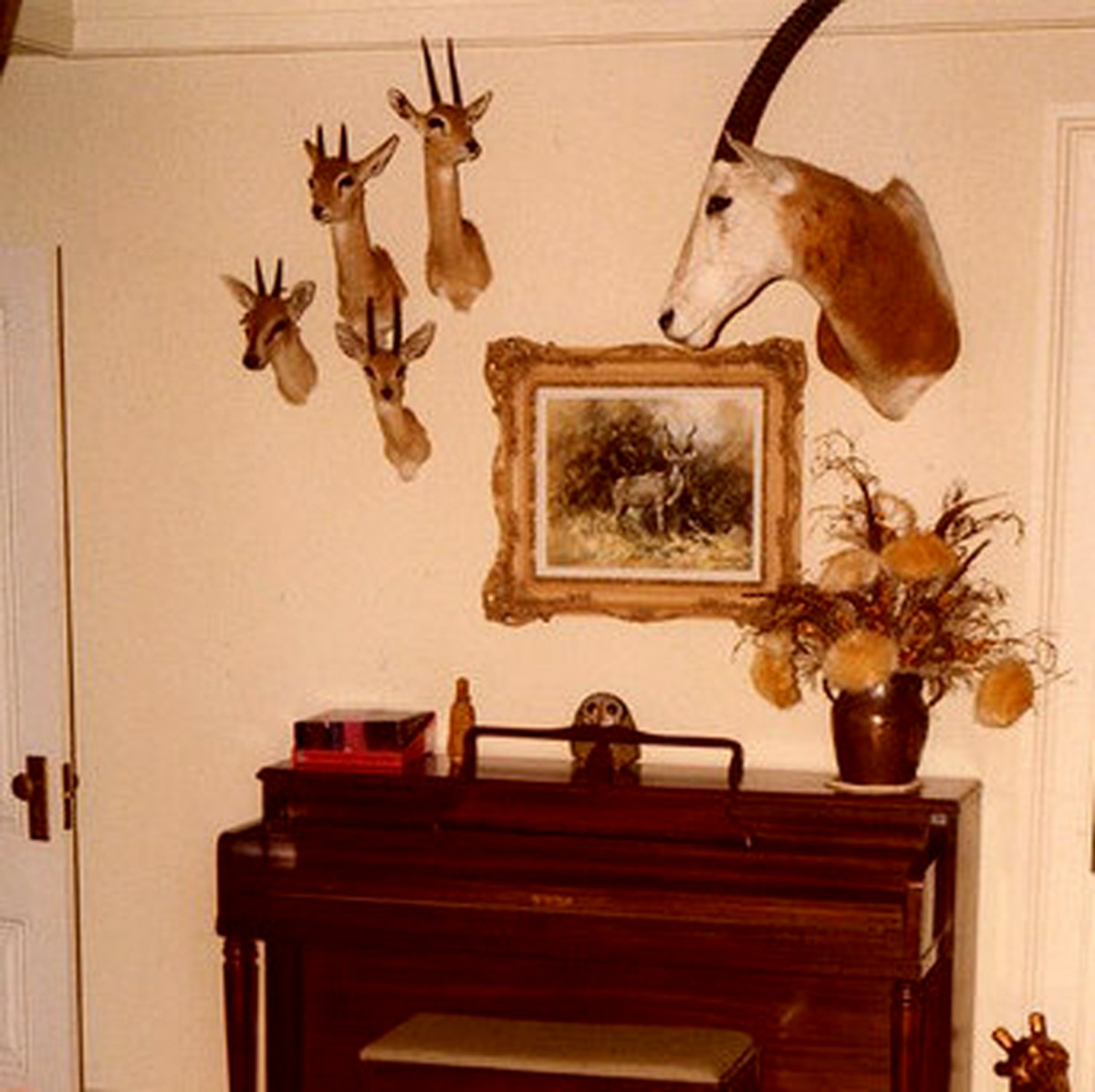 This taxidermy display doesn't work in the music room.