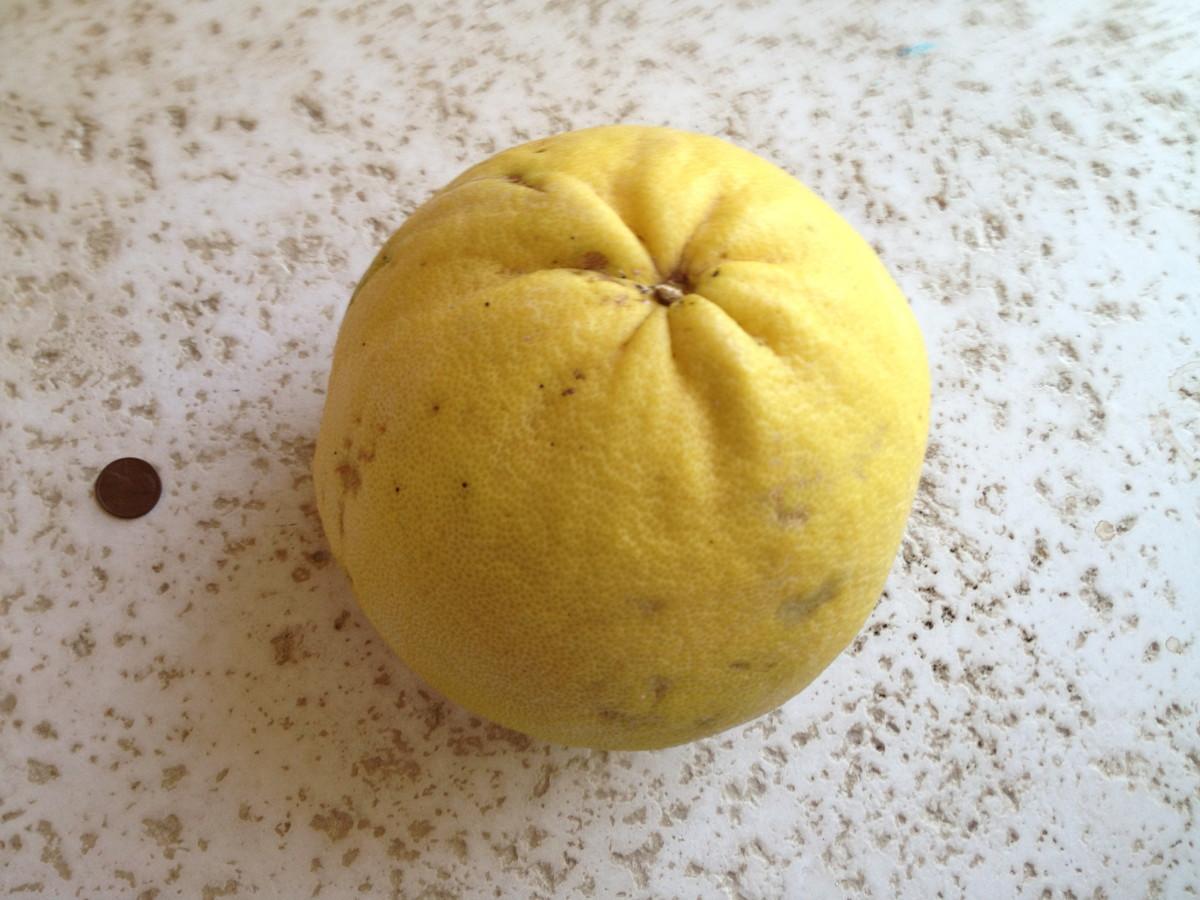Pomelo: 10 Reasons to Enjoy this Fabulous Fruit