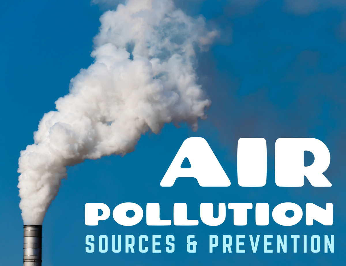What causes air pollution, and how can we control and minimize its harmful effects?