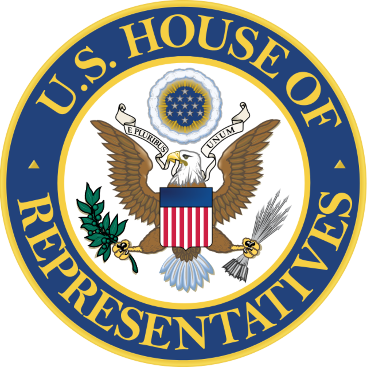 How Do I Remove a Representative From Office?