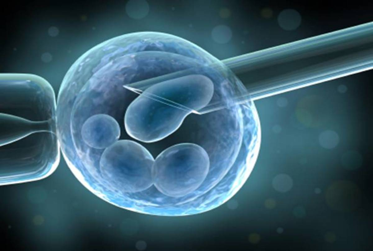 Human stem cells made using Dolly cloning technique. (Artist rendition)