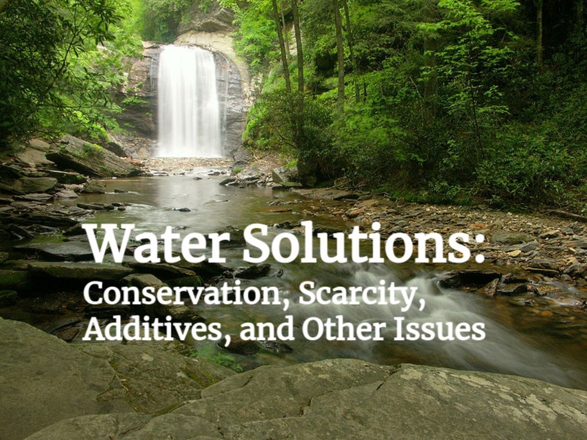 Water Solutions: Conservation, Scarcity, Additives, and Other Issues