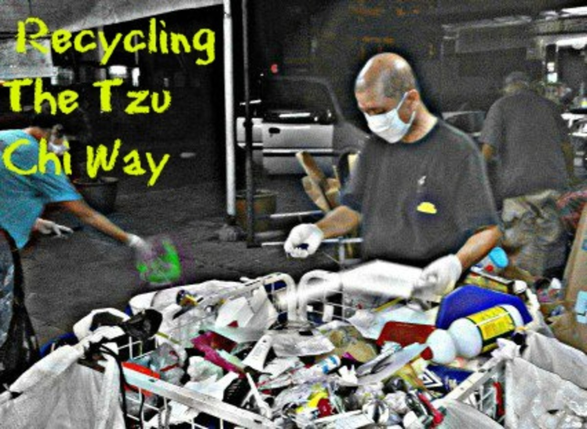 Recycling Programs The Tzu Chi Way