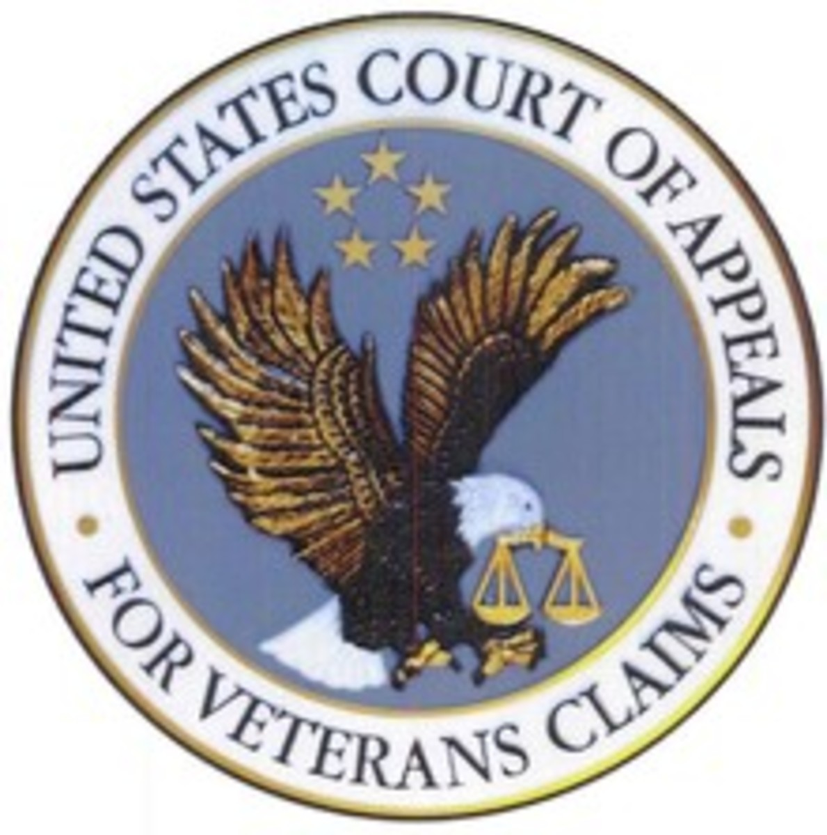 One Soldier's Legal Battle With the Department of Veterans Affairs