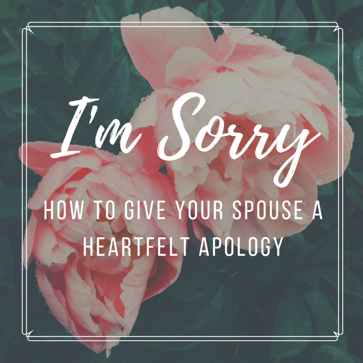 How to apologize to a girl you are dating