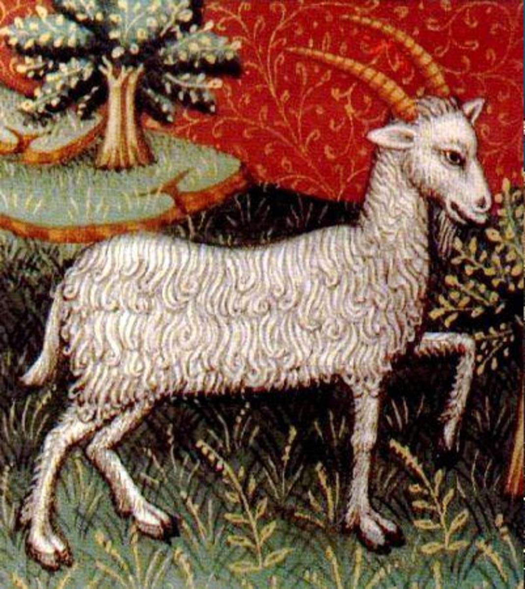 The Capricorn is symbolized by the Goat.  Capricorn is also an Earth sign with and practicality and dependability dominating the Goat's personality.