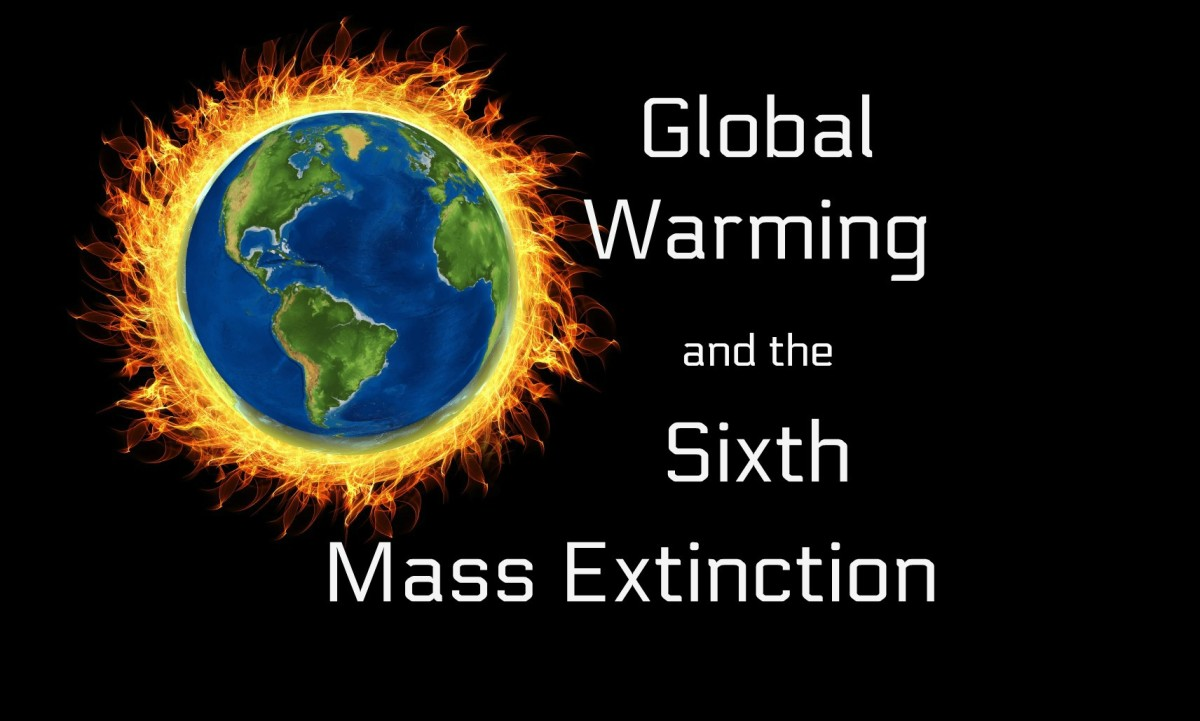 Global Warming and the Sixth Mass Extinction
