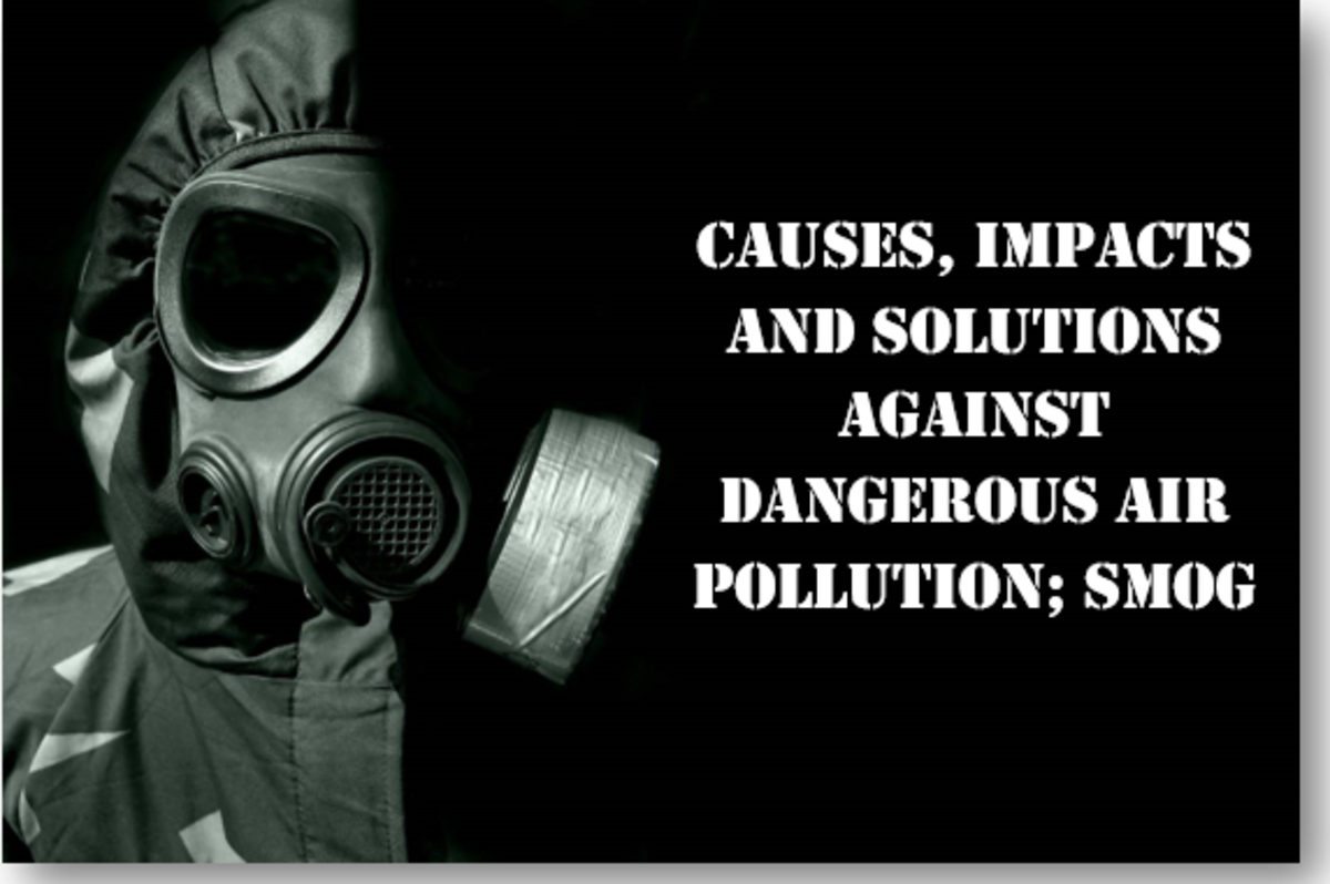 Causes, Impacts, and Solutions Against Dangerous Air Pollution: Smog