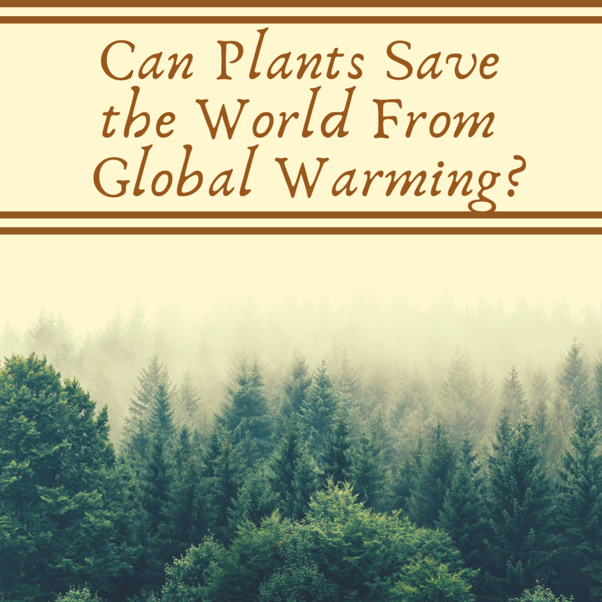 Can Plants Save the World From Global Climate Change?