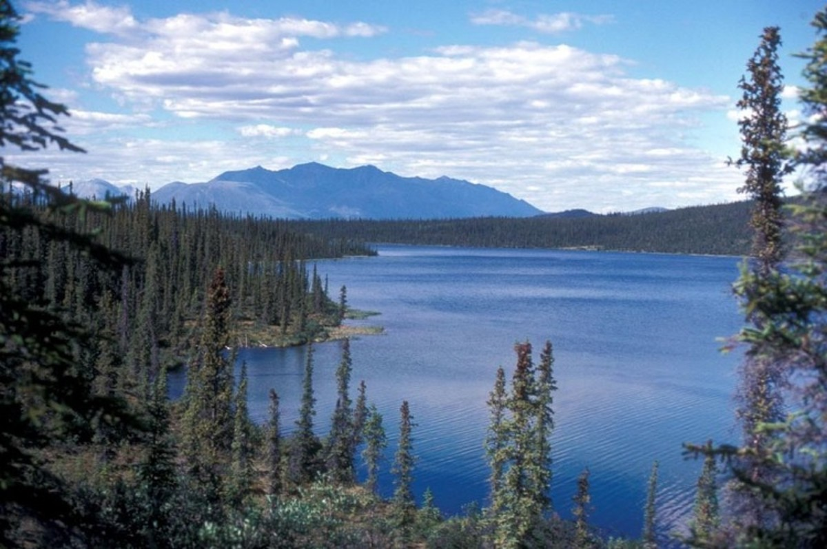 Black Fish Lake, in Alaska's Arctic National Wildlife Refuge