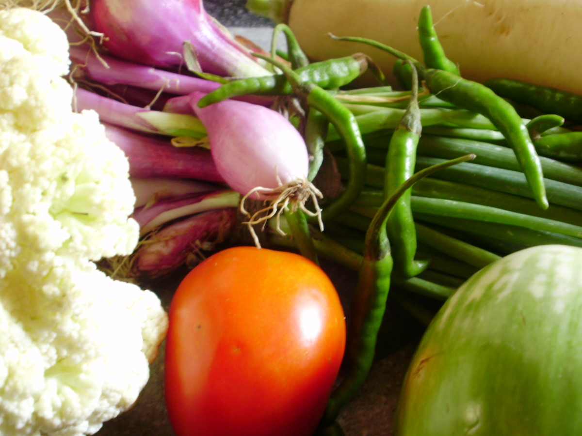 Are GMO foods safe to eat? Find out!