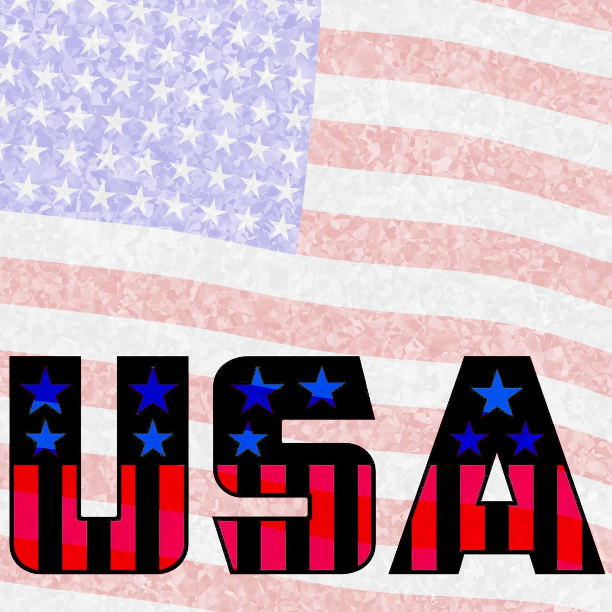 What Would You Change About The United States of America?