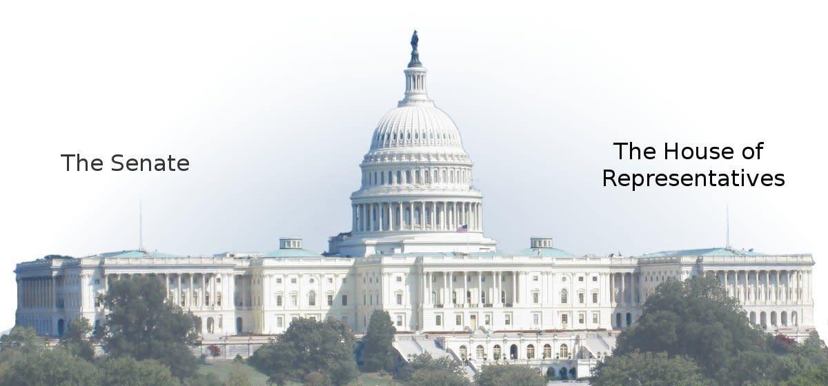 Dear Senators