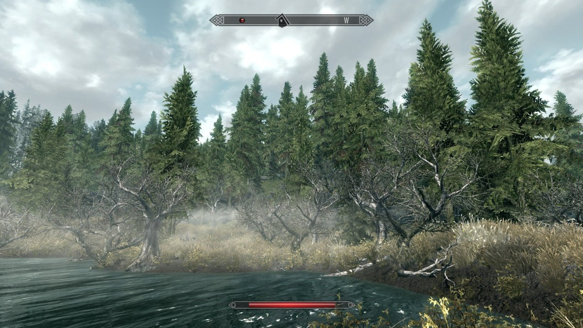 Skyrim with mods is a beautiful and engaging game.