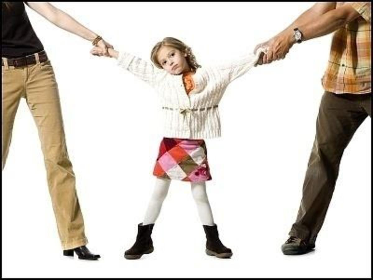 A Professional Template for Creating a Child Custody Evaluation