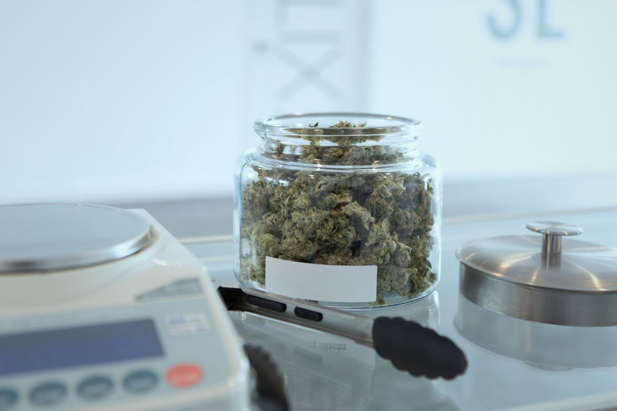 Legalization of Marijuana Does Not Increase Crime