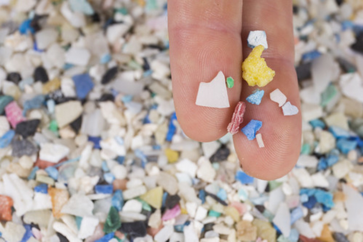 Large particles of microplastic.