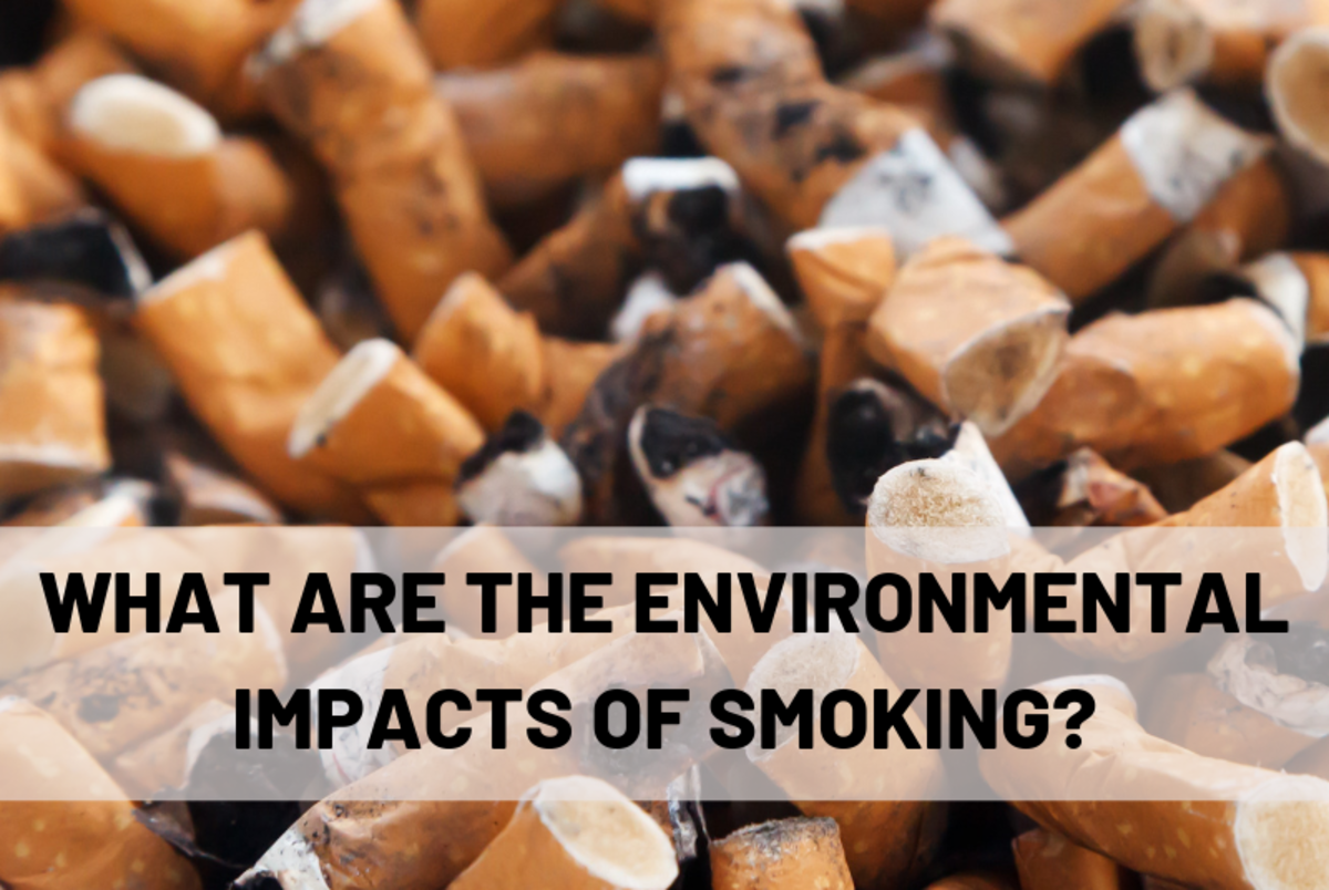 What are the environmental impacts of smoking?