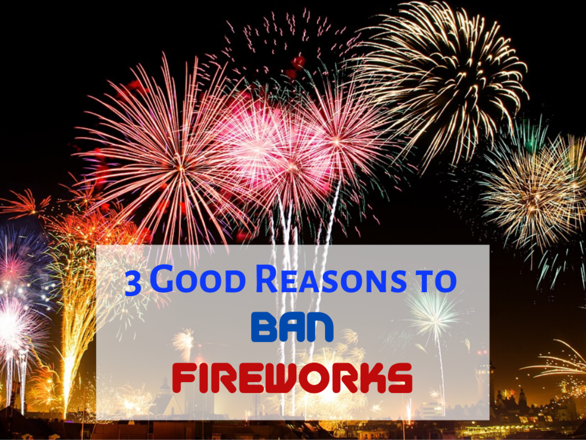 Fireworks are harmful to people, animals, and the environment.