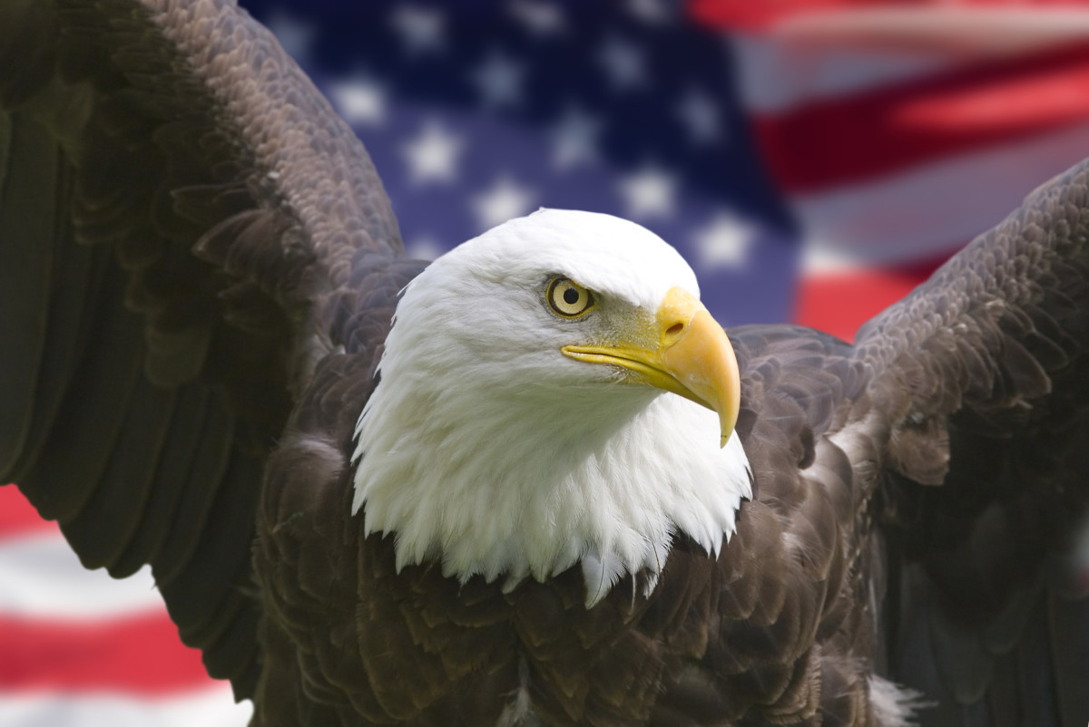 3 Reasons Why America Is the Greatest Country on Earth